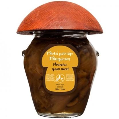 Εικόνα της Μουσειο Μανιταριων Μετεωρων Γλυκό κουταλιού μανιτάρι 380gr